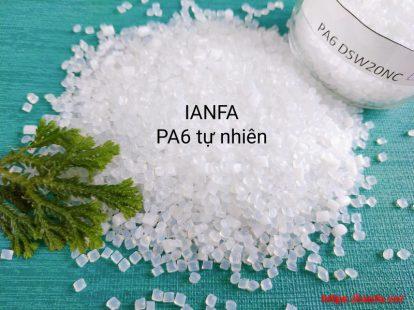 Hạt nhựa PA6 DSW20NC